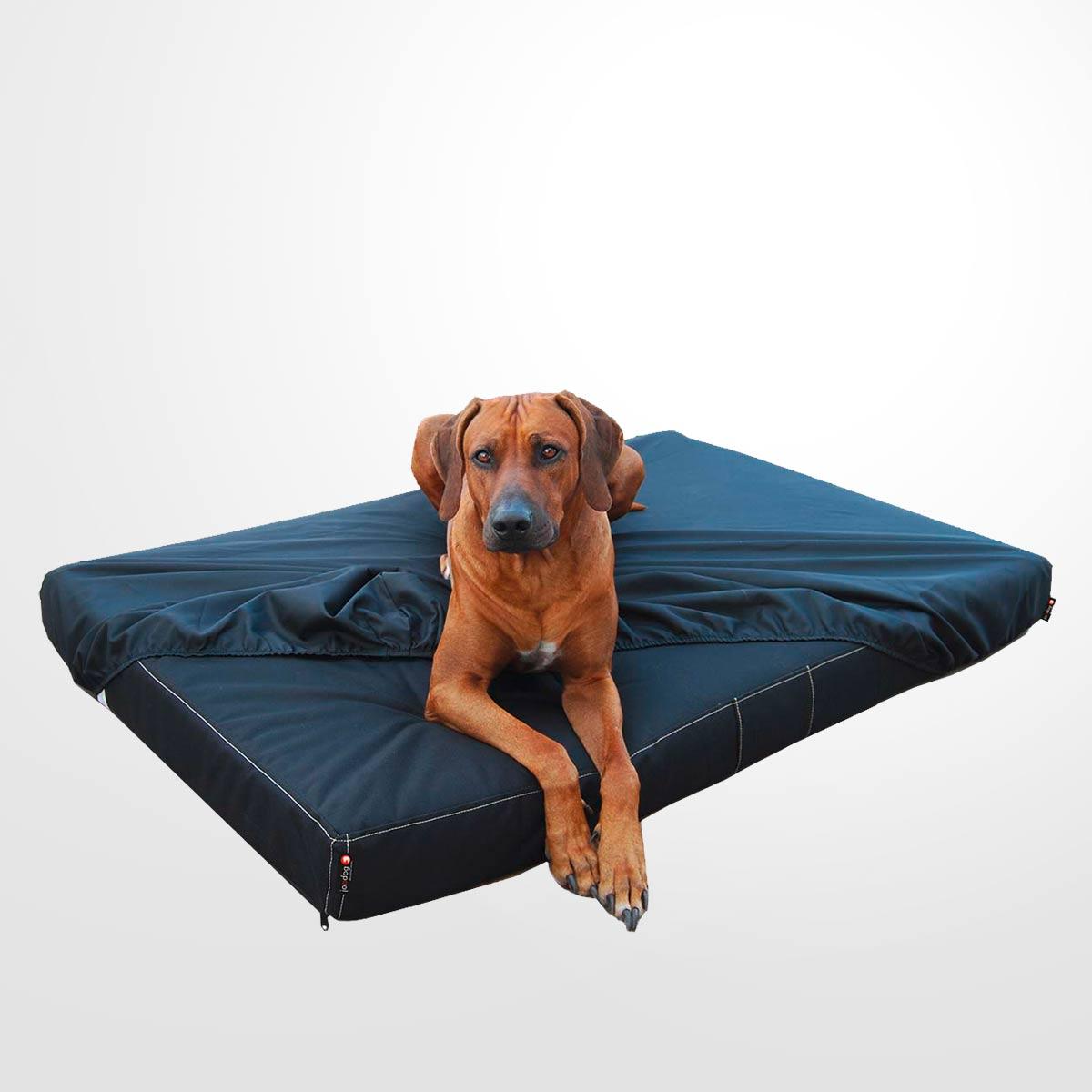 joodog BRAVE M13-18 Ortho | P1200, Orthopädische Hundematte, Hundebetten Grosshandel, Wholesale. Spezialmatte für Tierheime, Hundepensionen