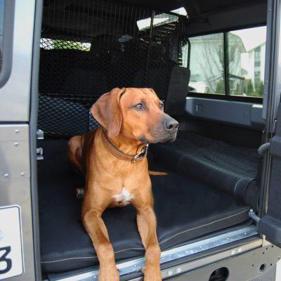 joodog CARGO M5 | P600D, P200 , Orthopädische Hundematte, Hundebetten Grosshandel, Wholesale. Hunde-Automatten Standard und Sonderanfertigungen