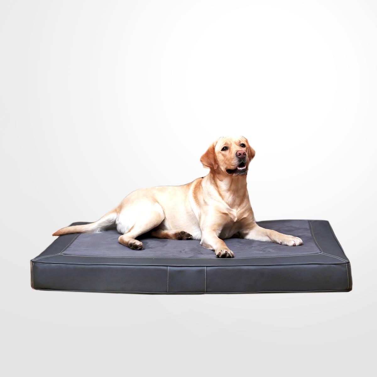 joodog GIN M5 Ortho, Orthopädische Hundematte, Hundebetten Grosshandel, Wholesale