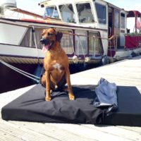 joodog YACHT - joodog YACHT – Spezialmatte für Boote und Yachten | Sonne und Salzwasser können kommen, Orthopädische Hundematte, Hundebetten Grosshandel, Wholesale.