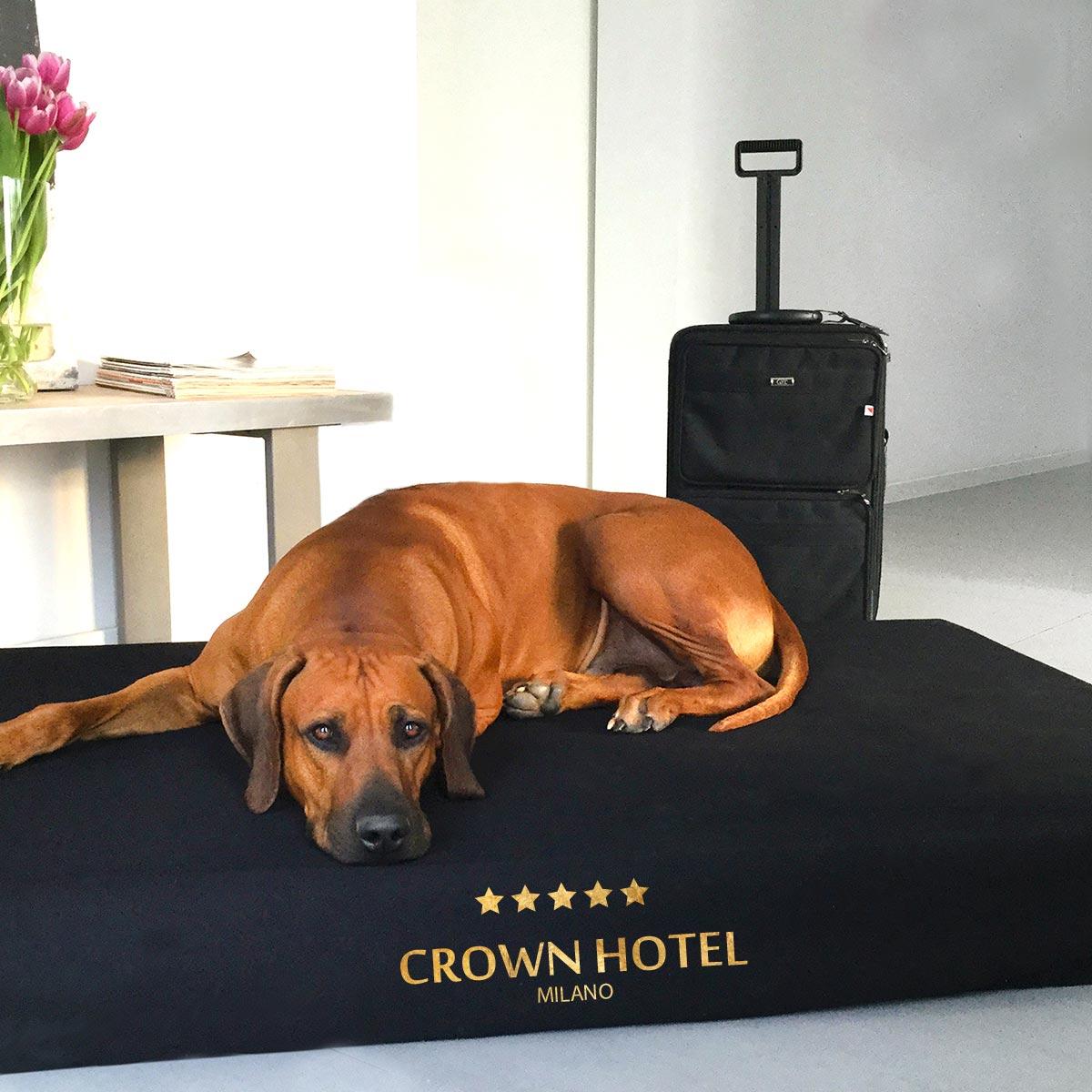 joodog TRAVEL Hotel - Spezialmatten mit Schonbezügenr | Special dog mat for hunter, Orthopädische Hundematte, Hundebetten Grosshandel, Wholesale.