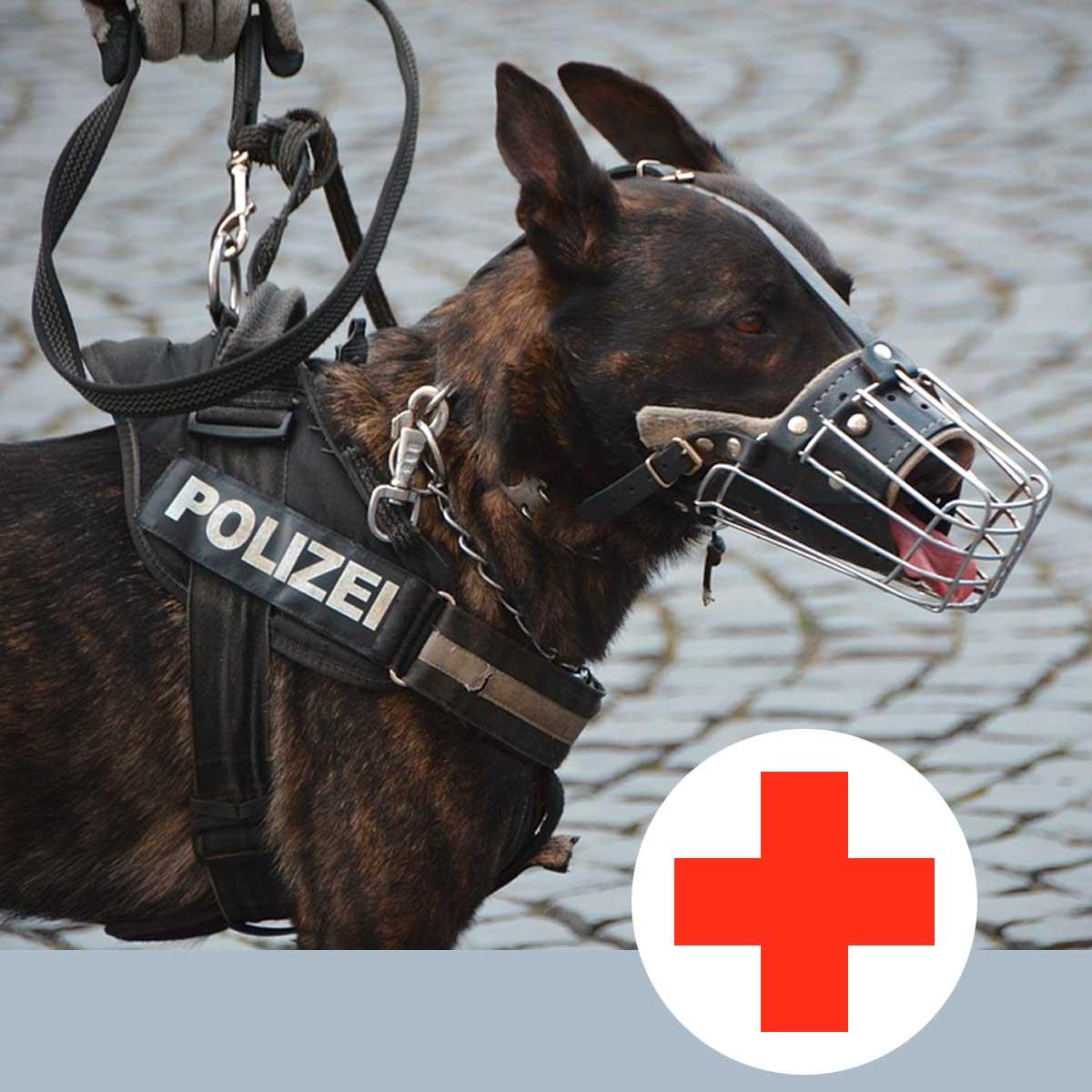 joodog Hundematten für Polizei, Rettungshunde, Transportboxen, Orthopädische Hundematte, Hundebetten Grosshandel, Wholesale.